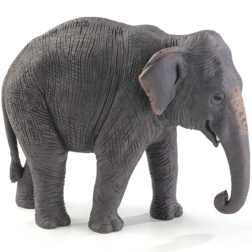 Mojo Indian Elephant