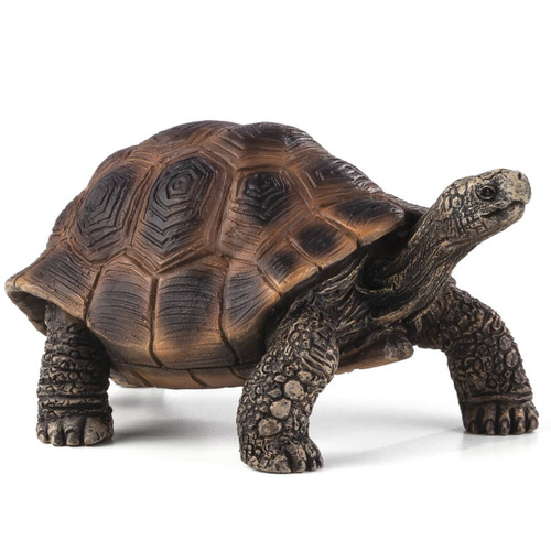 Mojo Giant Tortoise