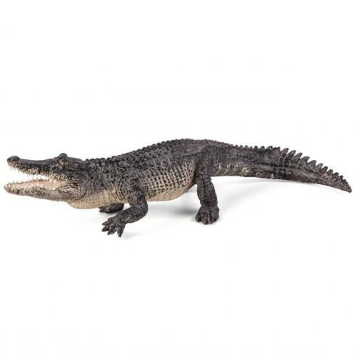 Mojo Alligator