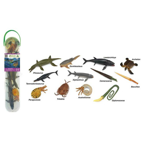 CollectA Prehistoric Marine Tube