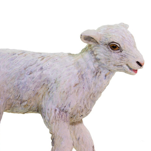 Safari Ltd Lamb