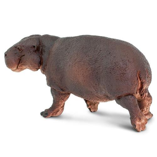 Safari Ltd Pygmy Hippo
