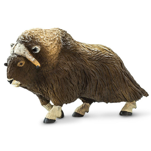 Safari Ltd Muskox