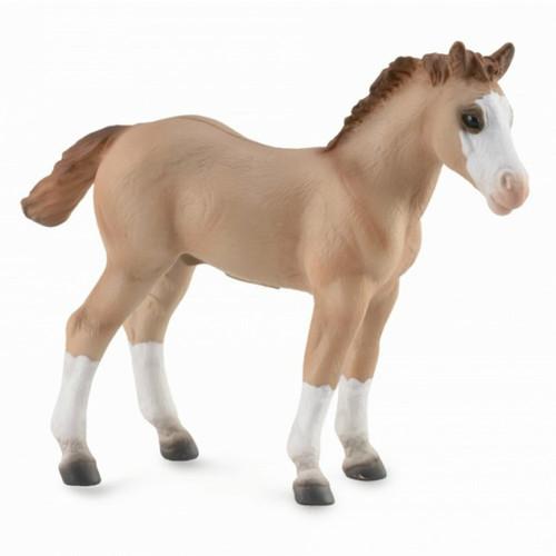 CollectA Quarter Foal Red Dun