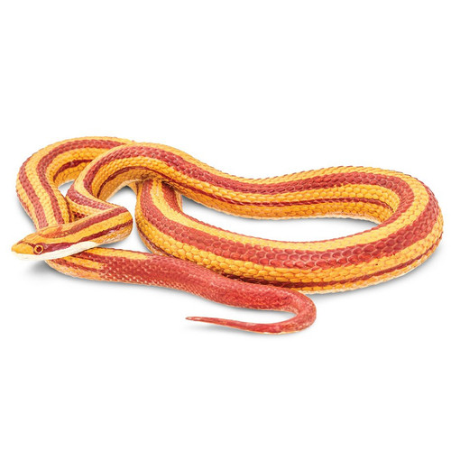 Safari Ltd Corn Snake IC