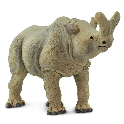 Safari Ltd Megacerops