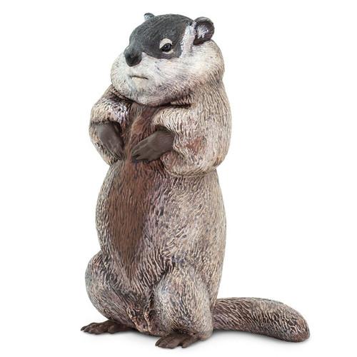 Safari Ltd Groundhog IC