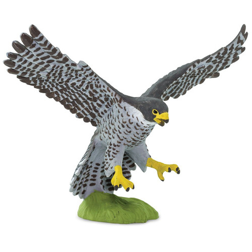 Safari Ltd Peregrine Falcon