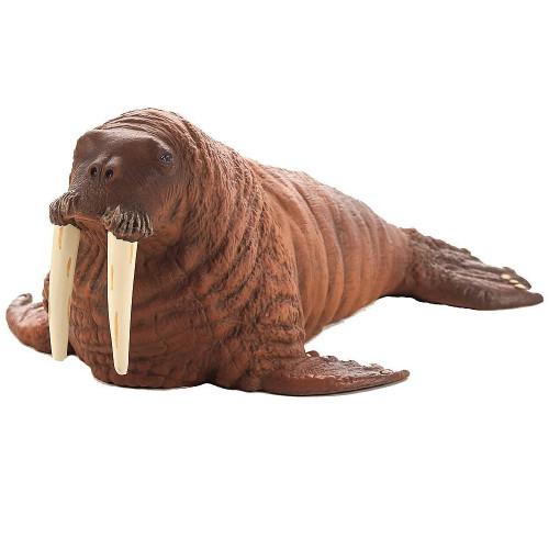 Mojo Walrus