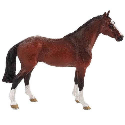 Mojo Dutch Warmblood Horse