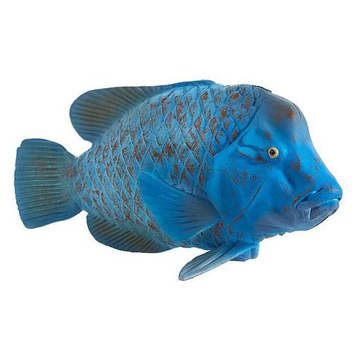 Mojo Blue Grouper (Groper)