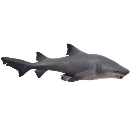 Mojo Bull Shark Deluxe