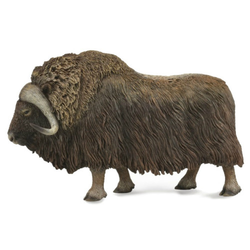CollectA Musk Ox