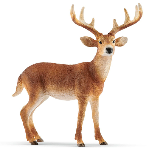 Schleich White-Tailed Buck