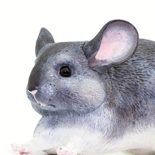 Safari Ltd Chinchilla IC