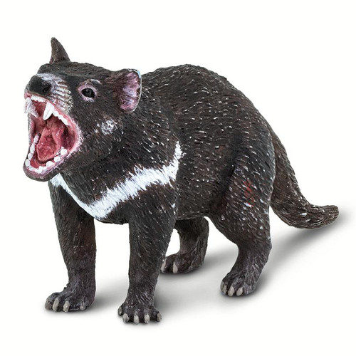 Safari Ltd Tasmanian Devil