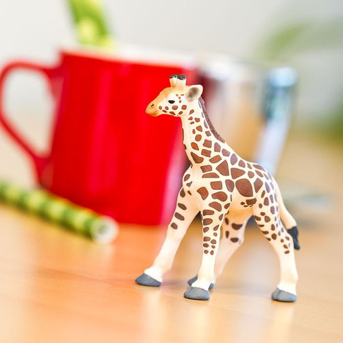 Safari Ltd Giraffe Baby