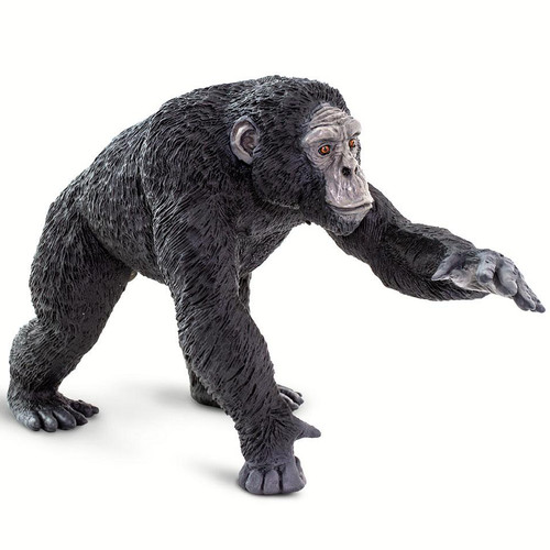 Safari Ltd Chimpanzee Jumbo