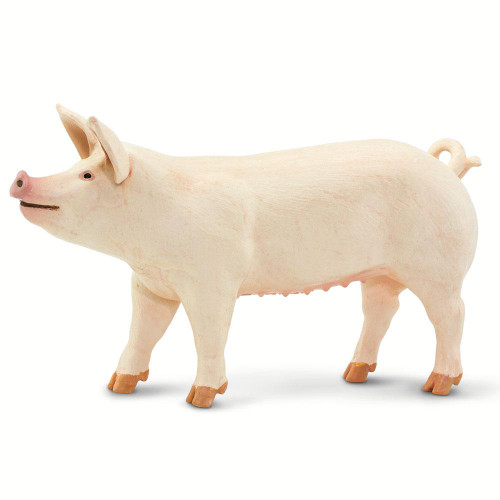 Safari Ltd Large White Pig