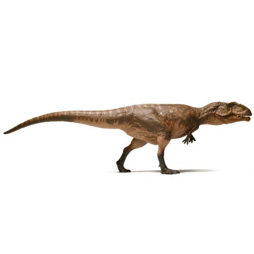 Giganotosaurus Eofauna