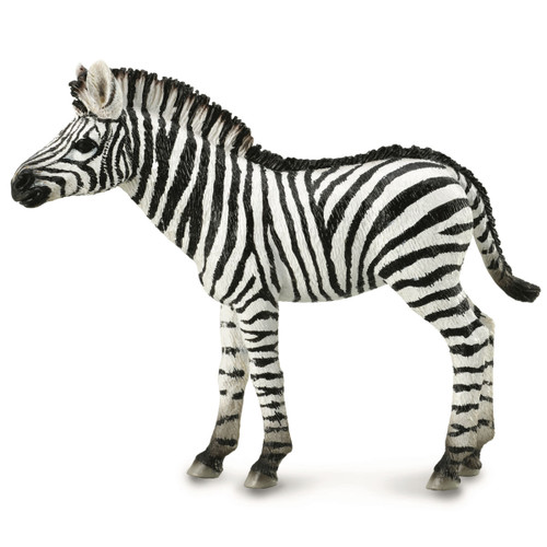 CollectA Zebra Foal