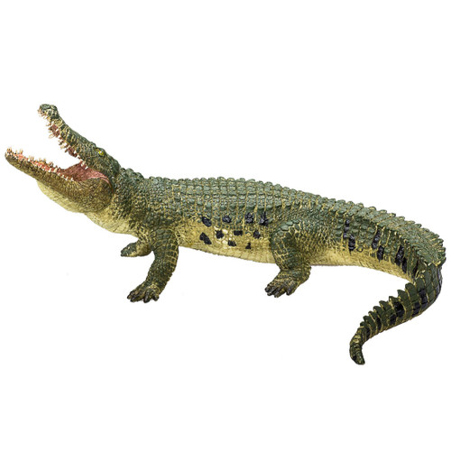 Crocodile Mojo