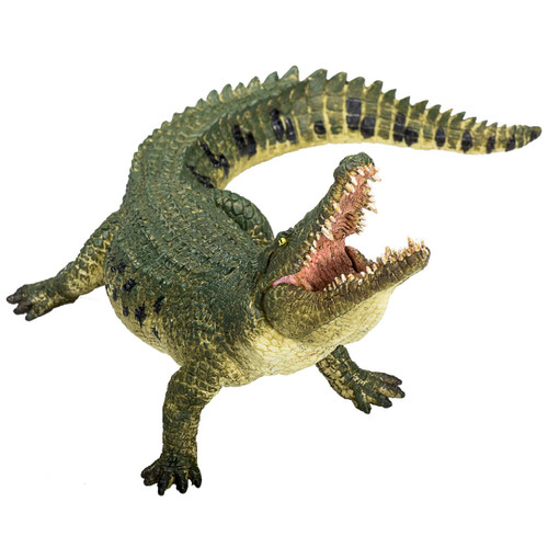 Mojo Crocodile