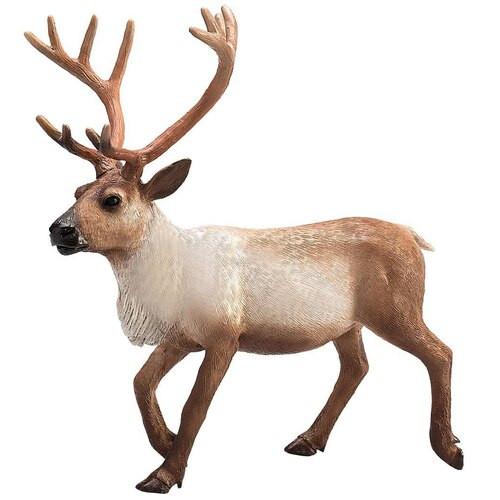 Mojo Reindeer