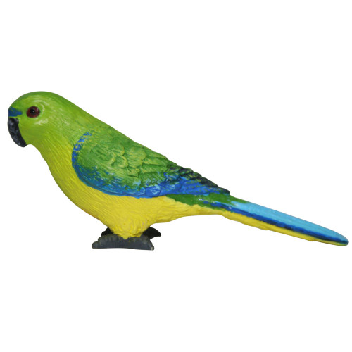 Science and Nature Orange Bellied Parrot