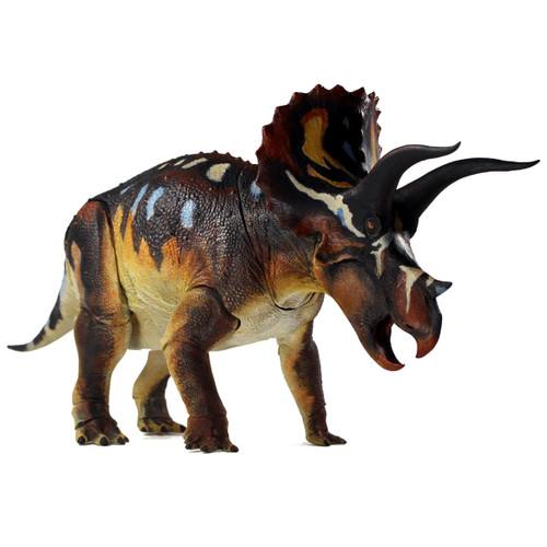Triceratops Horridus Adult