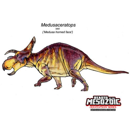 CB Medusaceratops