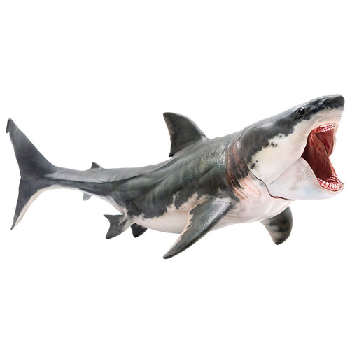 PNSO Patton the Megalodon