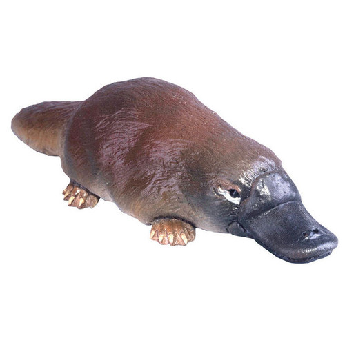 PNSO Harry the Platypus