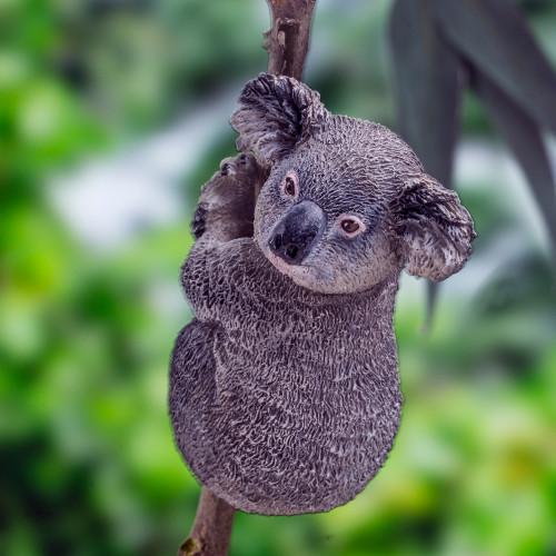 PNSO Anny the Koala Small outdoor photo