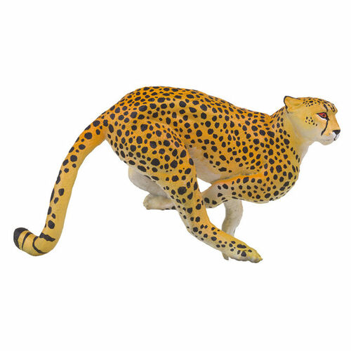 PNSO Ami the Leopard