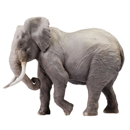 PNSO Chike the African Bush Elephant