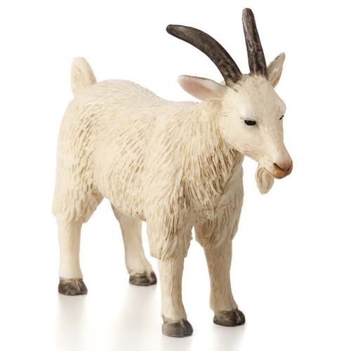 Mojo Billy Goat White