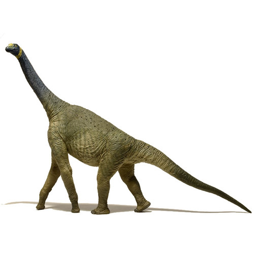 EoFauna Atlasaurus side view