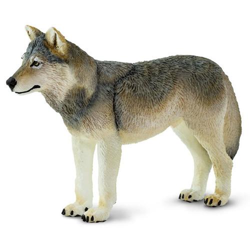 Safari Ltd Grey Wolf
