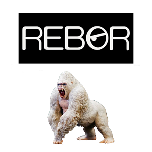 Rebor