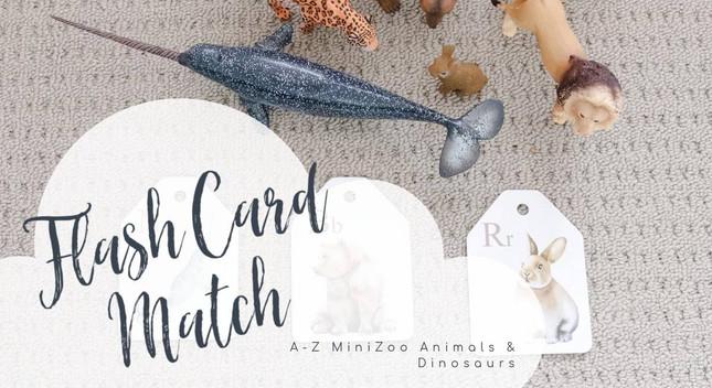 Animal Flash Cards | MiniZoo Blog