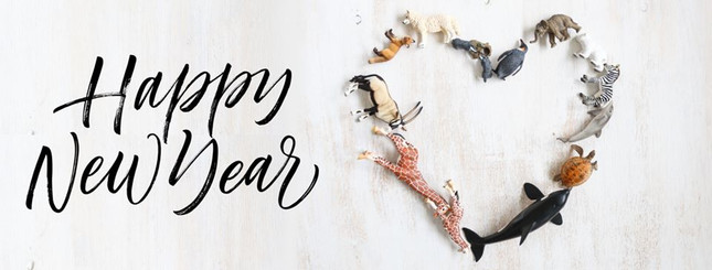 Happy New Year! | MiniZoo Blog