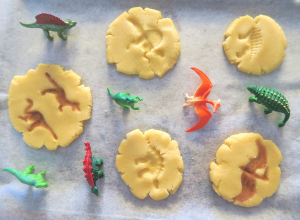 Dinosaur Fossil Cookies | MiniZoo Blog