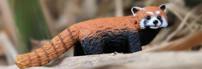 Educating about the Endangered | MiniZoo Blog