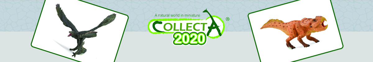 Collecta 2020 Header - Click here to go back to Collecta
