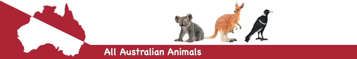 All Australian Animals banner - Click here to go back