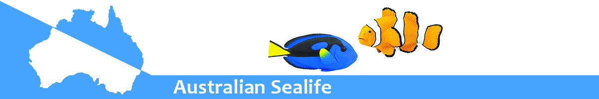 Australian Sealife banner
