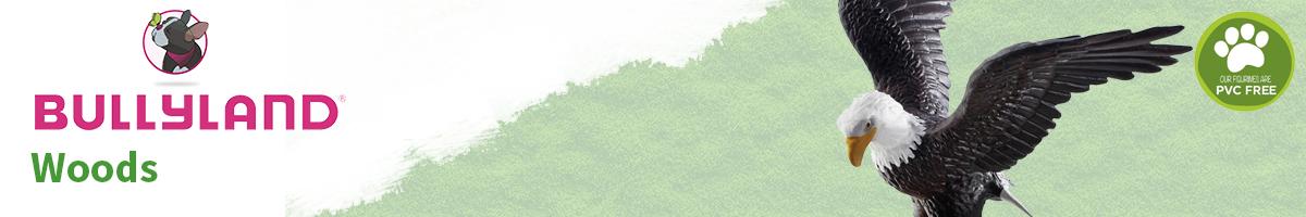bl-woods1.jpg