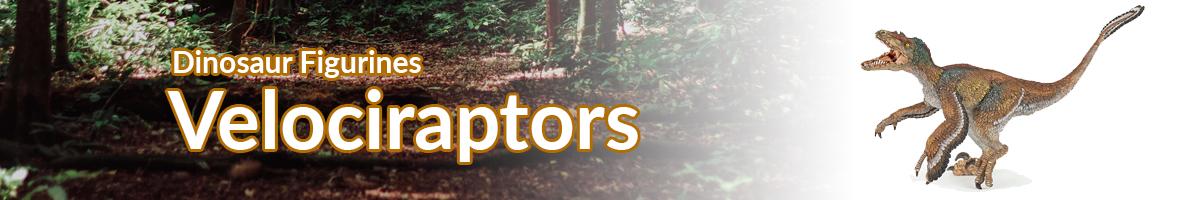 Dinosaur Figurines Velociraptor banner - Click here to go back to Dinosaur Figurines