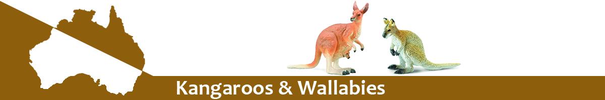 Kangaroos & Wallabies banner
